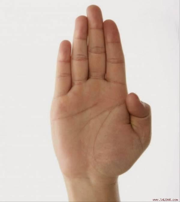 bàn tay hình 1