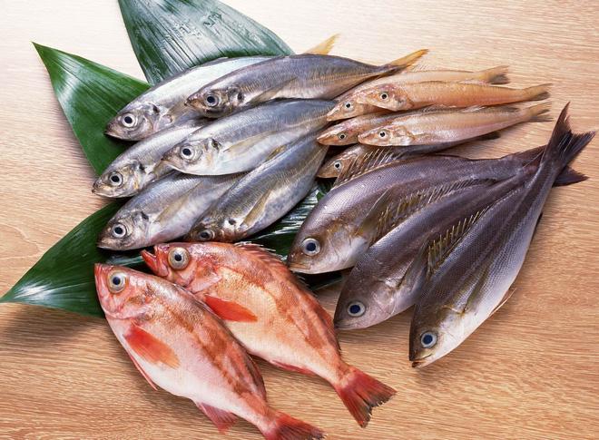 Những thực phẩm bà bầu không nên ăn: Cá chứa thủy ngân